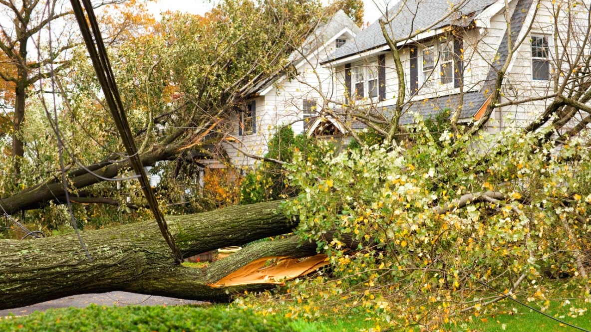 Tips to Prep Your Home for Spring Storms