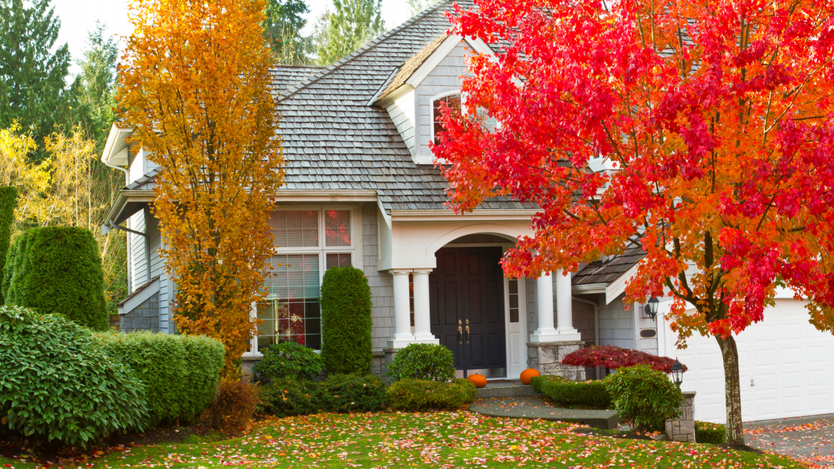 Home Maintenance Strategies to Avoid Costly Repairs